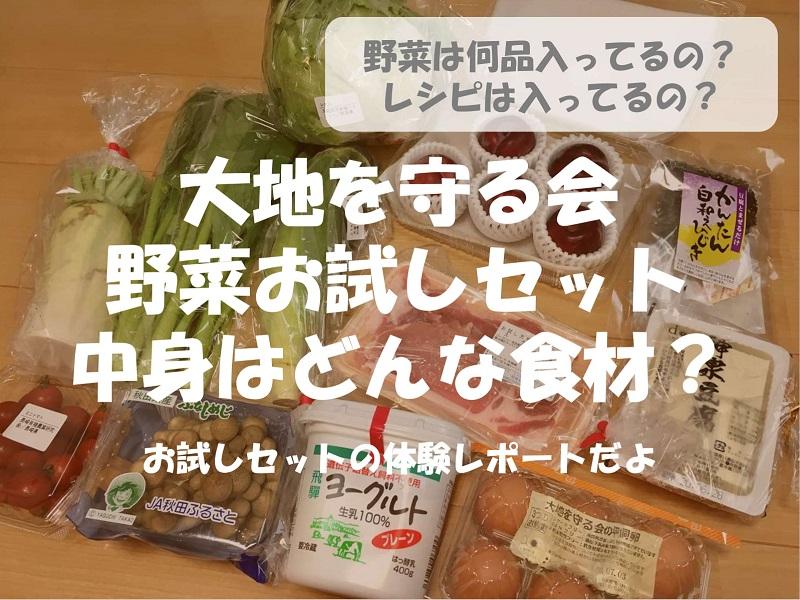 【体験レポート】大地を守る会の野菜お試しセットの中身は