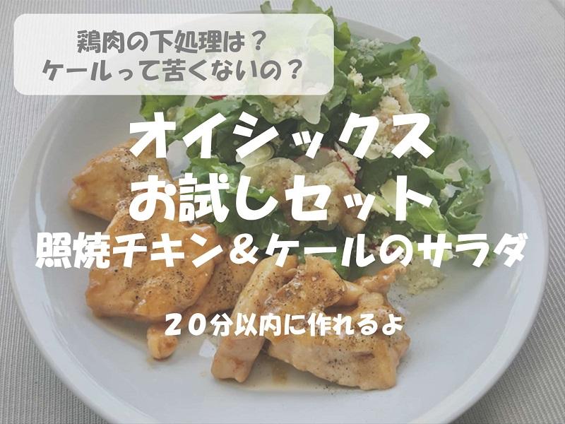 【レシピ付き】オイシックスのお試しセットの照焼チキンとケールのサラダ